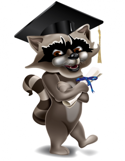 Raccoon_graduate_medium
